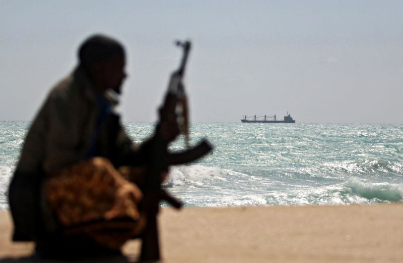 somali pirates & maritime security services