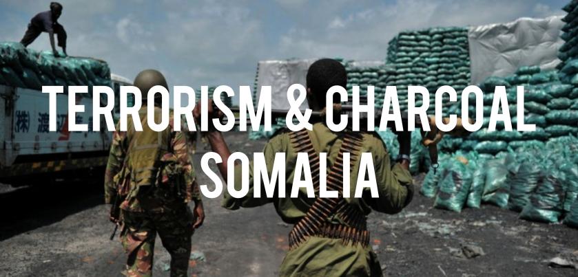 Terrorism & The Charcoal Trade in Somalia